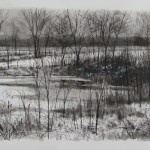 THAWING POND  SUMI INK  30X40  2013