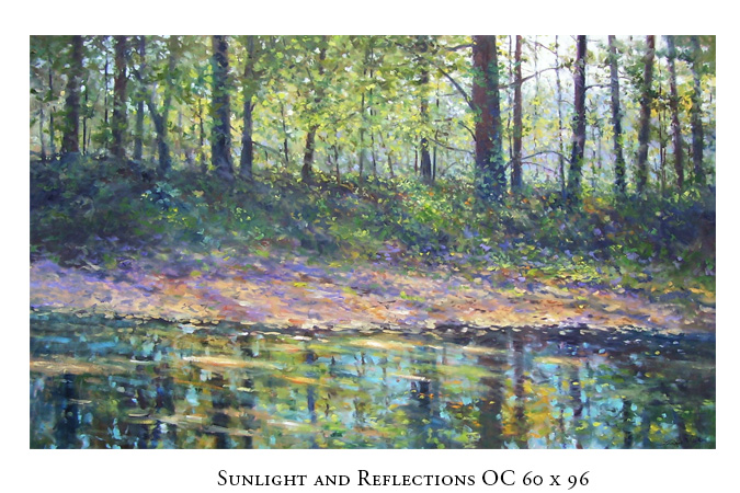 sunlightandreflections675